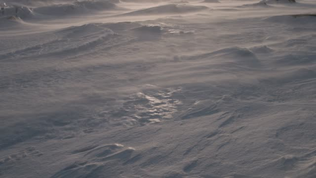 wind driven snow on tundra, canada - ice stock videos & royalty-free footage
