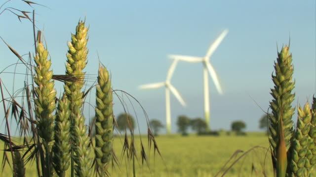Wind Energy - Windfarm