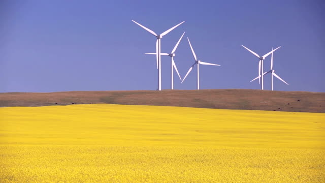 wind farm alternative energy - prairie stock videos and b-roll footage