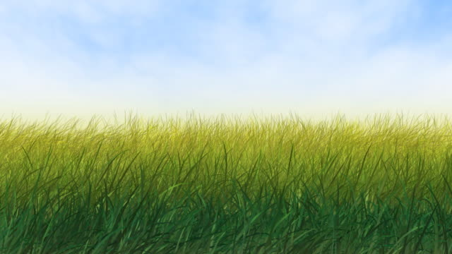 wind in grass - lawn stock videos & royalty-free footage
