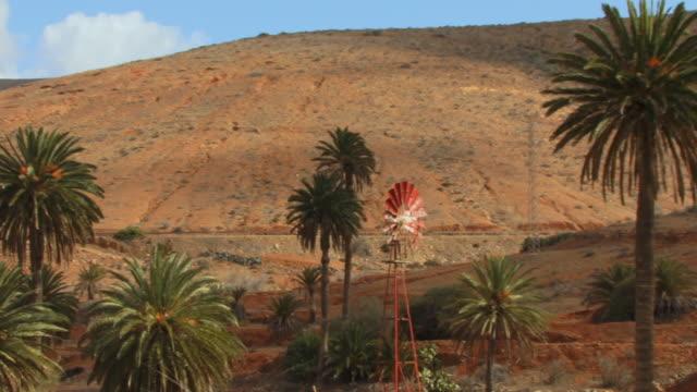 vídeos y material grabado en eventos de stock de ms, pan, wind mill amongst palm trees in arid landscape / vega de rio palmas, fuerteventura, canary islands, spain - oasis desierto