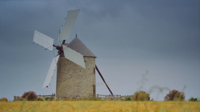 ms, wind mill in a cereal field, flowers, cloudy sky - mill stock videos & royalty-free footage
