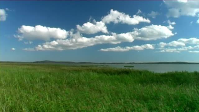 vento sul lago-time lapse - riva del lago video stock e b–roll