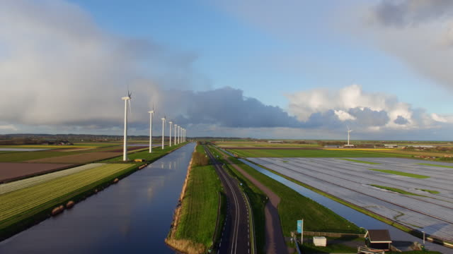 wind power and tulips field in holland - landscape scenery stock videos & royalty-free footage