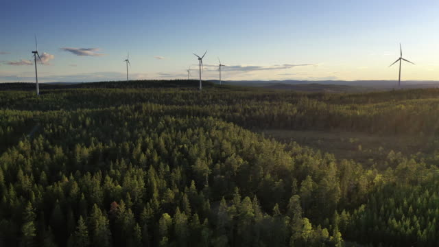 wind power stations in a forest landscape - sweden stock videos & royalty-free footage
