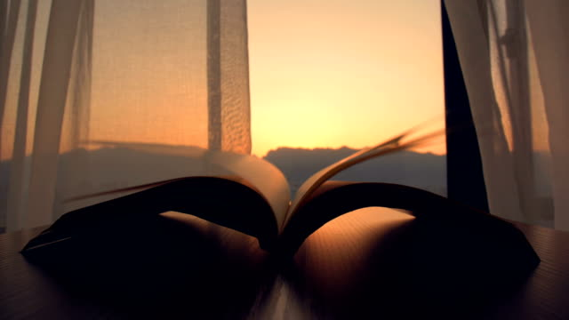 wind reading book in the morning - diario video stock e b–roll