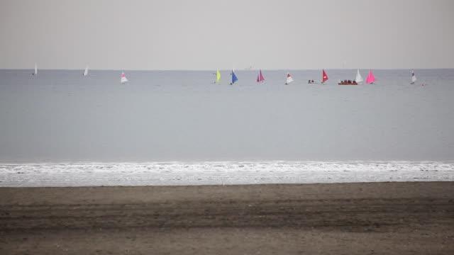 windsurf - windsurf video stock e b–roll