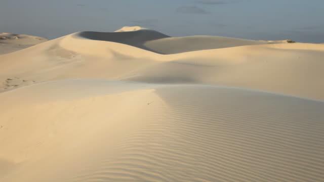wind swept アレーナ - 砂漠点の映像素材/bロール