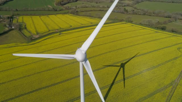 wind turbine in field of oilseed rape - 10 seconds or greater stock videos & royalty-free footage