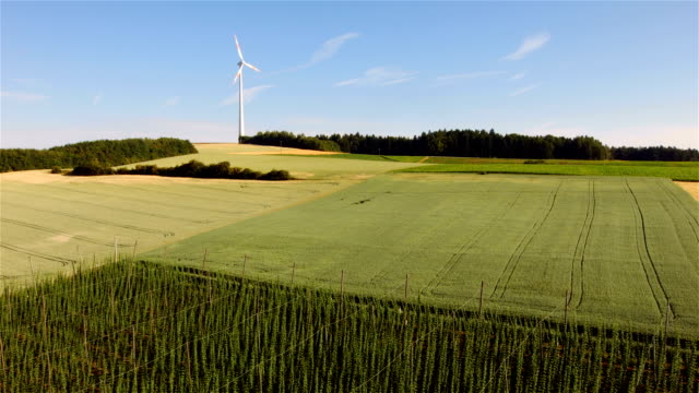 Wind turbine in fields