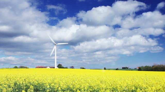Wind turbine in yellow field
