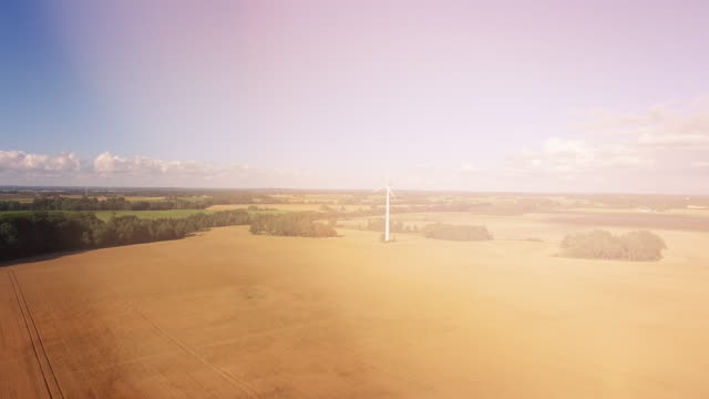 Wind Turbine on Wheat Field with Lens Flares