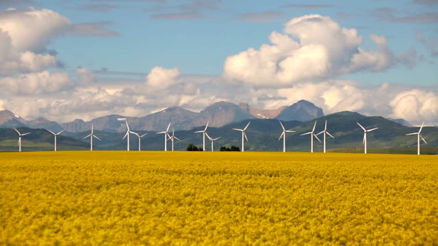 wind turbine renewable energy - traditionally canadian stock videos & royalty-free footage