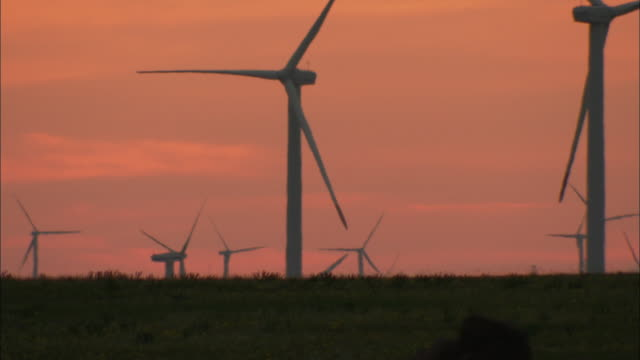 ms wind turbines against sunset sky, huitengxile, inner mongolia, china - medium group of objects stock videos & royalty-free footage