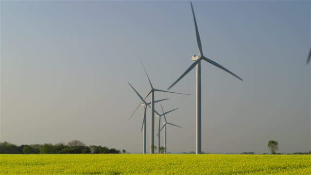 wind turbines and yellow rapeseed fields - crucifers stock videos and b-roll footage