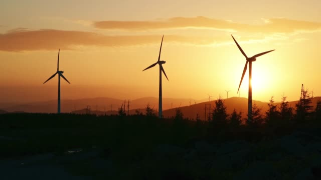 vídeos de stock e filmes b-roll de 4k: wind turbines at sunrise in golden sky - três objetos