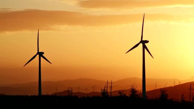 vídeos de stock, filmes e b-roll de turbinas eólicas ao nascer do sol no céu dourado - grupo pequeno de objetos