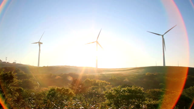 vídeos y material grabado en eventos de stock de wind turbines farm por sunrise - power in nature