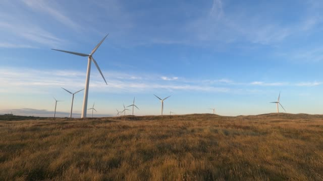 wind turbines in a field - sky stock videos & royalty-free footage