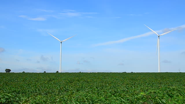 wind turbines in fields with windy sky and cloudscape - full hd format stock videos & royalty-free footage