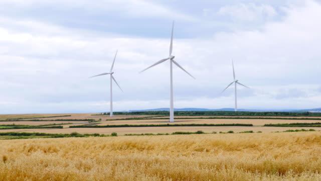 Windturbines in de zomer