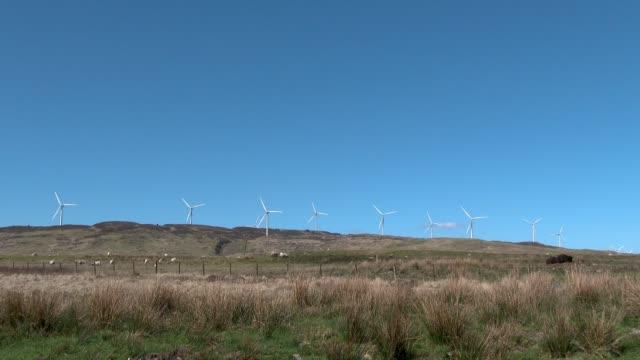 wind turbines on a scottish hillside - johnfscott stock videos & royalty-free footage