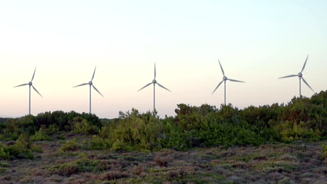 HD: Wind turbines on forrest