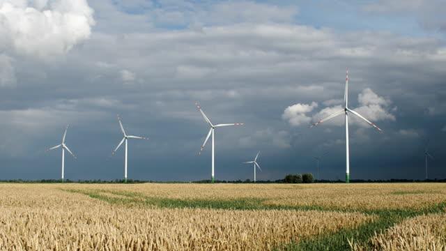 vídeos de stock e filmes b-roll de wind turbines on the wheat field - alto contraste