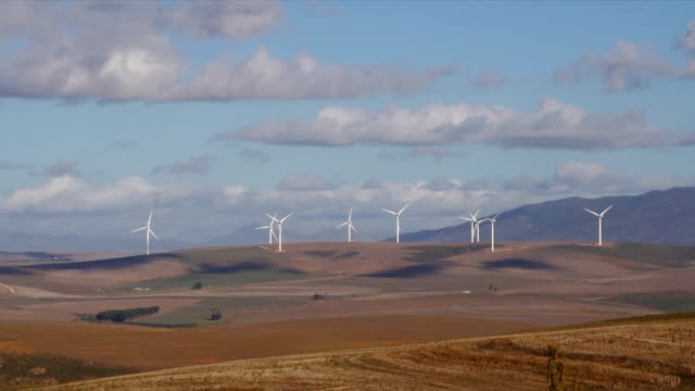 ws wind turbines on  wind farm / klipheuwel/ western cape/ south africa - medium group of objects stock videos & royalty-free footage