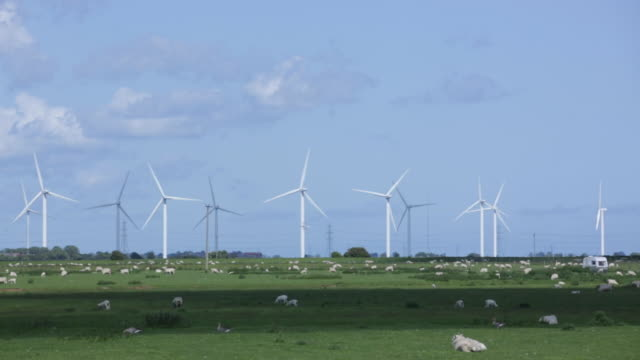 WS Wind turbines spinning in a field