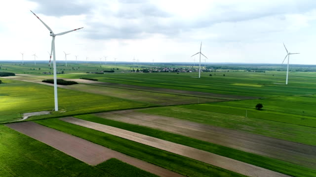 vídeos y material grabado en eventos de stock de turbinas de viento de pie sobre una flor campos de plantas de colza y trigo - alto descripción física