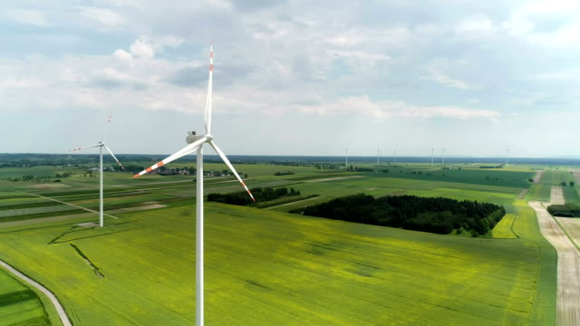 wind turbines standing on a blooming fields of rape plants and wheat - wind turbine stock videos & royalty-free footage