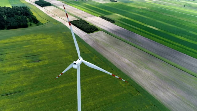 wind turbines standing on a blooming fields of rape plants and wheat - wind turbine stock videos and b-roll footage