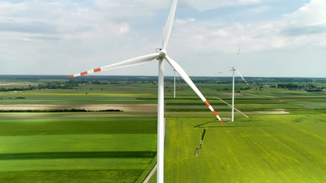 vídeos de stock e filmes b-roll de wind turbines standing on a blooming fields of rape plants and wheat - quinta
