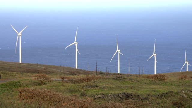 wind turbines stretching out over maui island - butte rocky outcrop stock videos & royalty-free footage