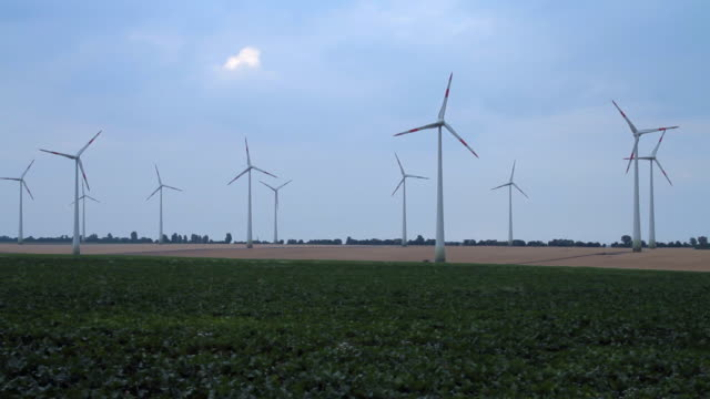Wind turbines turn in a field.