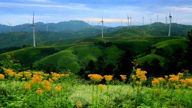 windturbinen - generator stock-videos und b-roll-filmmaterial