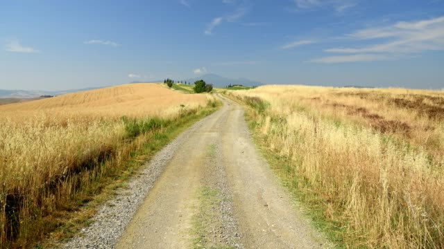 winding country road in hilly landscape,  pienza, val d'orcia, siena province, tuscany, italy - anhöhe stock-videos und b-roll-filmmaterial