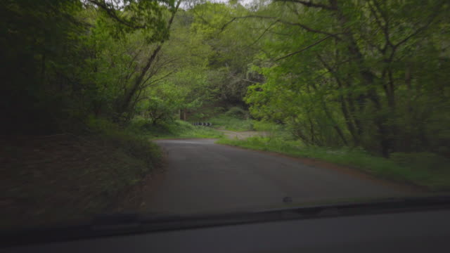 winding country road - surrey england stock videos & royalty-free footage