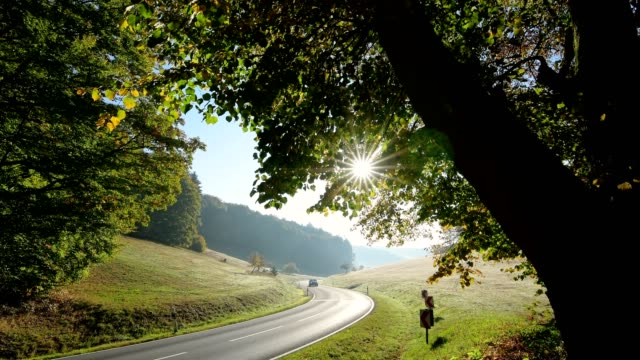 winding country road with sun in autumn, rothenbuch, spessart, bavaria, germany - winding road stock videos & royalty-free footage