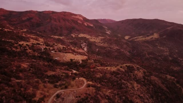 winding mountain road in sequoia forest - aerial shot - sequoia stock videos and b-roll footage