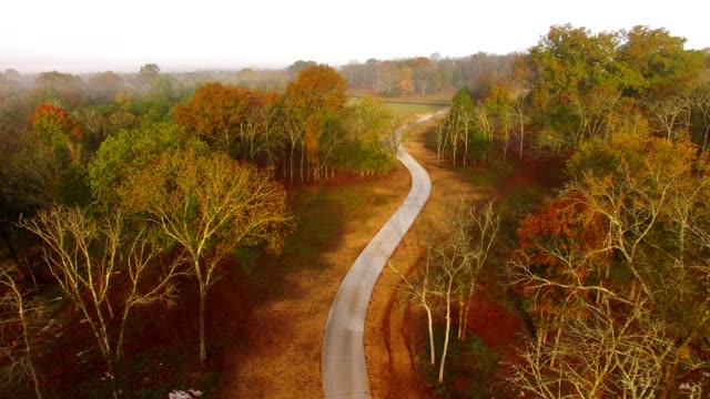 winding path through fall foliage - nashville stock videos and b-roll footage