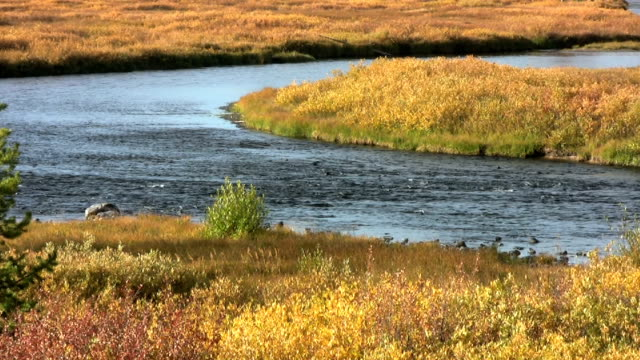 Winding River Ripples through a colorful landscape