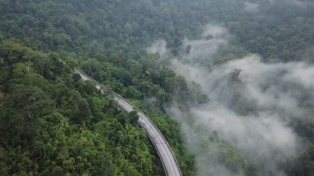 vídeos de stock, filmes e b-roll de estrada sinuosa na floresta de cameron highland, estado pahang na parte da manhã com nuvens - ponto de vista de carro