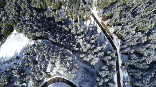 winding road in wintry forest, dolomites, italy - mountain road stock videos & royalty-free footage