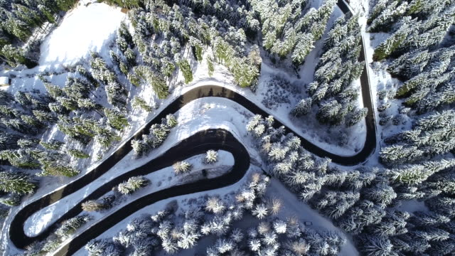 Winding Road in Wintry Forest, Dolomites, Italy