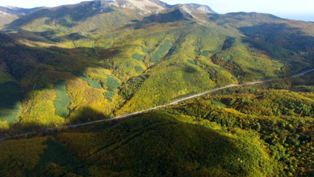 aerial: winding road through hilly terrain with forests - chiaroscuro stock videos and b-roll footage