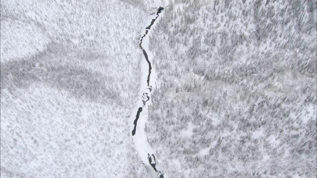 stockvideo's en b-roll-footage met aerial winding waterway in forested valley of snow-covered mountain range / alaska, united states - alaska verenigde staten