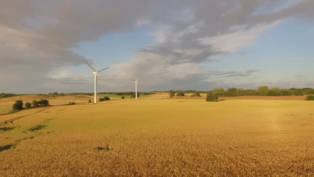 windmill cornfield drone - 40 seconds or greater stock videos & royalty-free footage