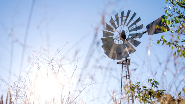 LS LA DS Windmühle In Savannah